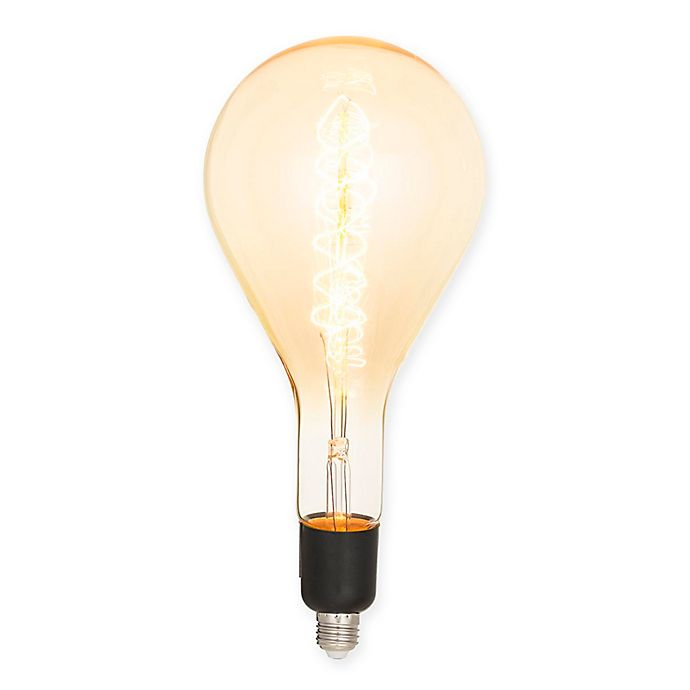 Alternate image 1 for Minka Lavery® 60-Watt Antique XL Edison Spiral Filament Bulb