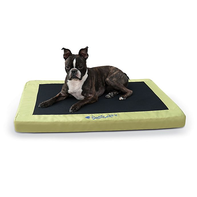 Alternate image 1 for K&H® Comfy n' Dry Large Indoor/Outdoor Bed in Lime Green