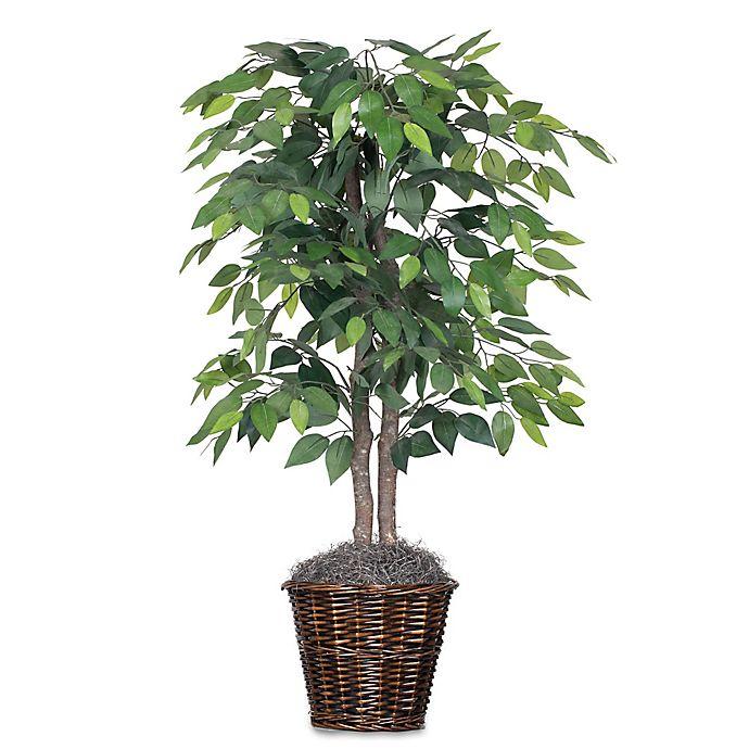 Alternate image 1 for Vickerman 4-Foot Fabric Ficus Bush in Rattan Basket