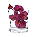 Badash Riviera 6.5-Inch Pocket Vase