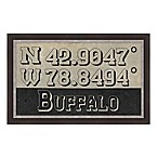 Buffalo Coordinates Framed Wall Art