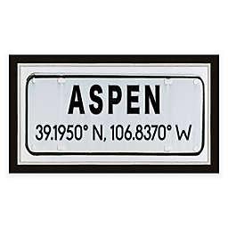 Aspen, Colorado Coordinates 28-Inch x 16-Inch Framed Wall Art