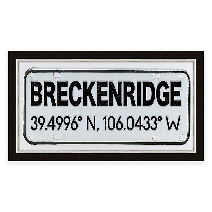 Alternate image 1 for Breckenridge Springs Colorado Coordinates Framed Wall Art