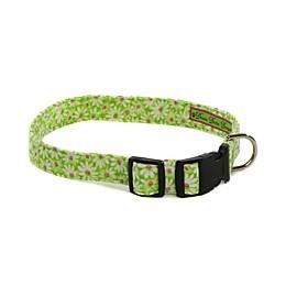 Donna Devlin Designs® Daisy Do II Adjustable Dog Collar
