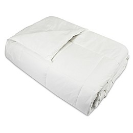 Natural Home™ Silk Comforter