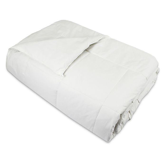 Alternate image 1 for Natural Home™ Silk Comforter