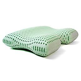 Authentic Comfort® Green Tea Memory Foam Advanced Contour Pillow