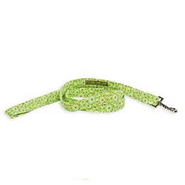Donna Devlin Designs® Daisy Do II Dog Accessories in Pink/Green