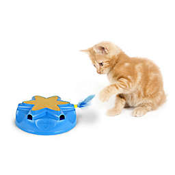 Our Pet's™ Catty Whack Cat Toy