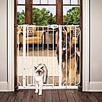 Carlson 36-Inch Pet Gate in White