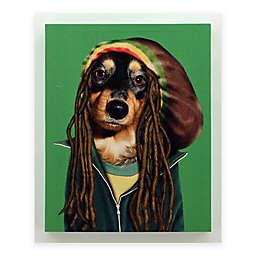 Pets Rock™ Reggae Canvas Wall Art
