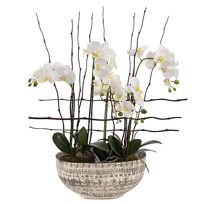 John Richards Florals 33 Quot Standing Tall Alabaster Orchids In White Bed Bath Amp Beyond