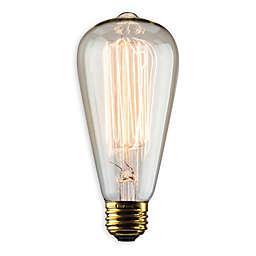 Luminance Nostalgia Reprod 60-Watt S21 Amber Vintage Light Bulb