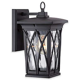 Quoizel® Grover Wall-Mount Outdoor Lantern in Mystic Black