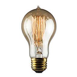 Luminance Nostalgia 30-Watt A19 Amber Light Bulb