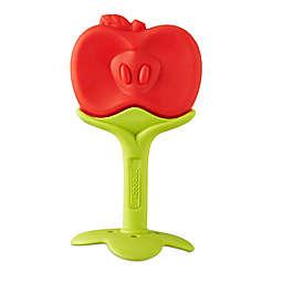 Innobaby® Teethin' Smart EZ Grip Apple Teether