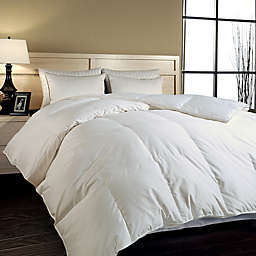 Year Round Warmth Siberian White Down Comforter