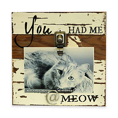 """Sweet Bird Meow 8""""x8"""" Clip Wood Picture Frame in White"""