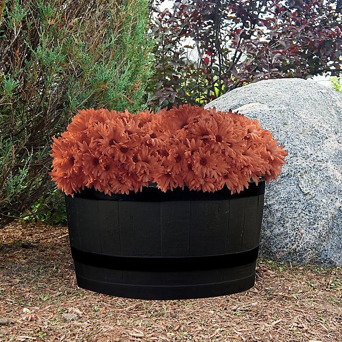 Rain Barrel Planter In Black Bed Bath Beyond