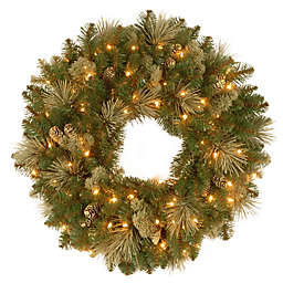 National Tree Company 2-Foot Carolina Pine Pre-Lit Artificial Wreath with Clear Lights