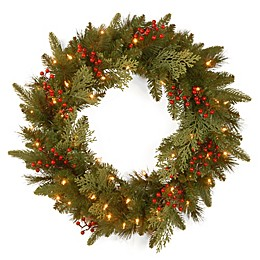 National Tree Company Classical Collection 24-Inch Wreath with White LED Lights