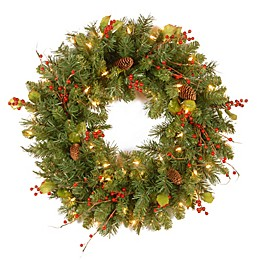 National Tree Company Classical Collection 24-Inch Wreath with Clear Lights