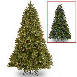 National Tree Company Downswept Douglas Fir Pre-Lit Christmas Tree with Dual Color® Lights