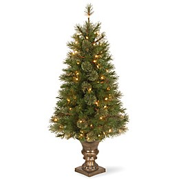 National Tree 4-Foot Atlanta Spruce Pre-Lit Entrance Christmas Tree with Clear Lights