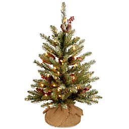 National Tree 2-Foot Dunhill Fir Pre-Lit Burlap Artificial Christmas Tree with Clear Lights