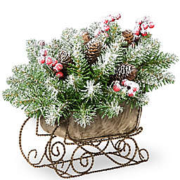 National Tree Dunhill Fir Sleigh 10-Inch Holiday Greenery