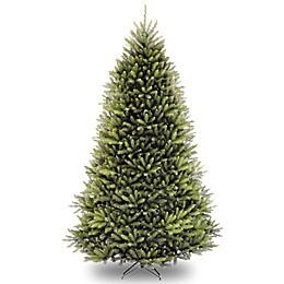 National Tree Dunhill Fir Christmas Tree