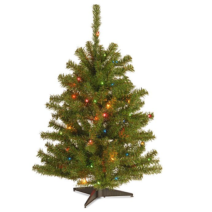 Alternate image 1 for National Tree 3-Foot Eastern Spruce Christmas Tree with Multi-Colored Lights
