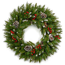 National Tree Frosted Berry 24-Inch Unlit Wreath