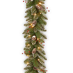 National Tree 9-Foot x 10-Inch Glittery Pre-Lit Mountain Spruce Garland
