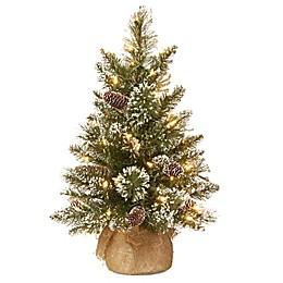 National Tree Company 2-Ft Pre-Lit Glittery Bristle Pine Christmas Tree w/ LED Lights