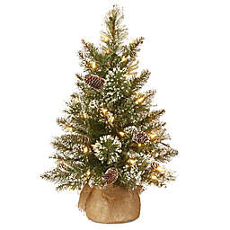 national tree company 2 ft pre lit glittery bristle pine christmas tree w