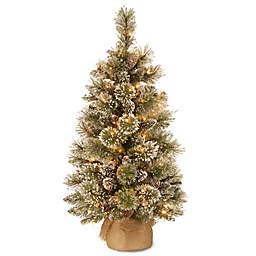 National Tree Company Pre-Lit Glittery Bristle Pine Christmas Tree w/ LED Lights