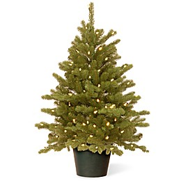 National Tree 3-Foot Hampton Spruce Pre-Lit Christmas Tree with Clear Lights in Growers Pot