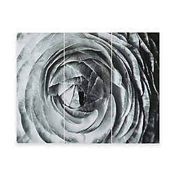 Madison Park Compass Rose Gel Coat Canvas Wall Art in Black/White (Set of 3)