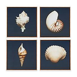 Madison Park Ocean Seashells 4-Piece Framed Canvas Wall Art