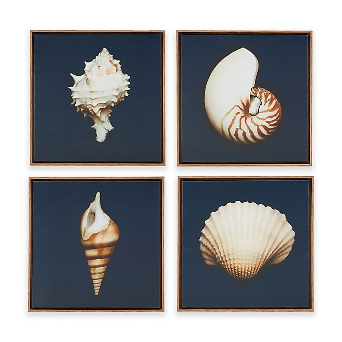 Alternate image 1 for Madison Park Ocean Seashells 4-Piece Framed Canvas Wall Art