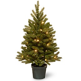 National Tree Company 3-Foot Pre-Lit Jersey Fraser Fir Christmas Tree with Warm White LED Lights