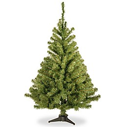 National Tree Company 4-Foot Kincaid Spruce Christmas Tree