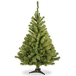 national tree company 4 foot kincaid spruce christmas tree