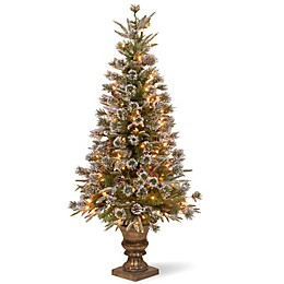 National Tree Company 4-Foot Liberty Pine Pre-Lit Entrance Tree with Clear Lights