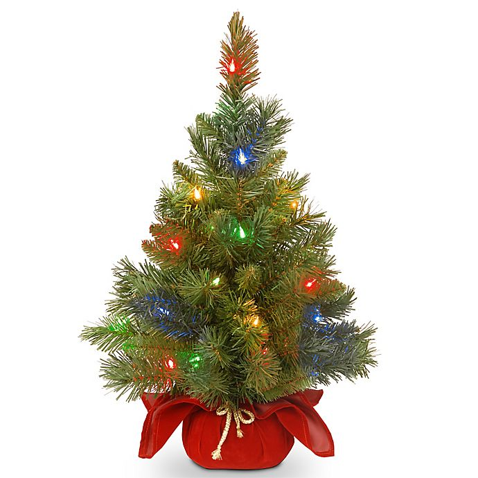 Alternate image 1 for National Tree Company 2-Foot Majestic Fir Christmas Tree with Battery-Operated Multicolor LED Lights