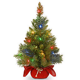 national tree company 2 foot majestic fir christmas tree with battery operated multicolor led - Battery Lighted Christmas Decorations