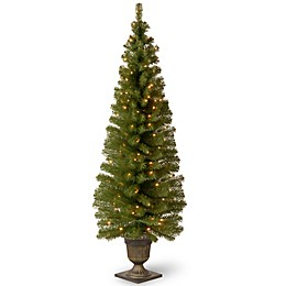National Tree Company 6-Foot Montclair Spruce Pre-Lit Entrance Tree with Clear Lights