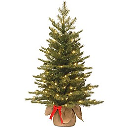 National Tree 3-Foot Nordic Spruce Battery-Operated Pre-Lit Christmas Tree with Warm White Lights