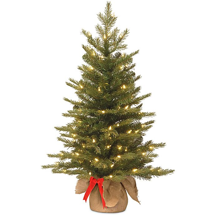 Alternate image 1 for National Tree 3-Foot Nordic Spruce Battery-Operated Pre-Lit Christmas Tree with Warm White Lights